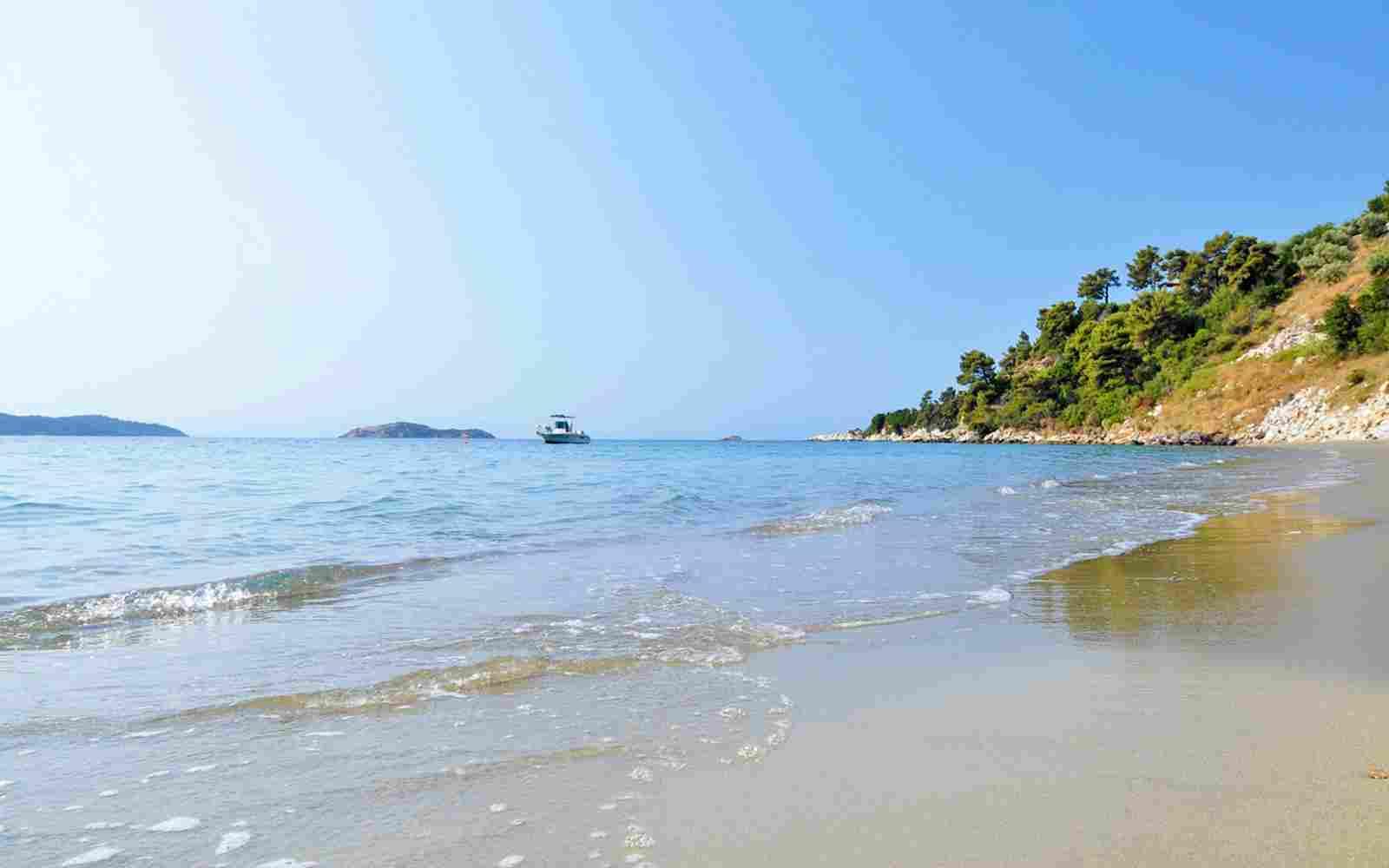 http://www.casacaribepuertomorelos.com/wp-content/uploads/2016/03/summer-beach-01.jpg
